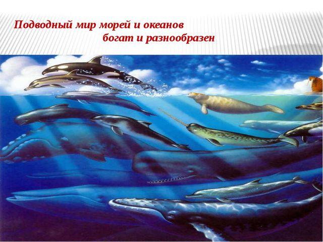 Подводный мир морей и океанов богат и разнообразен