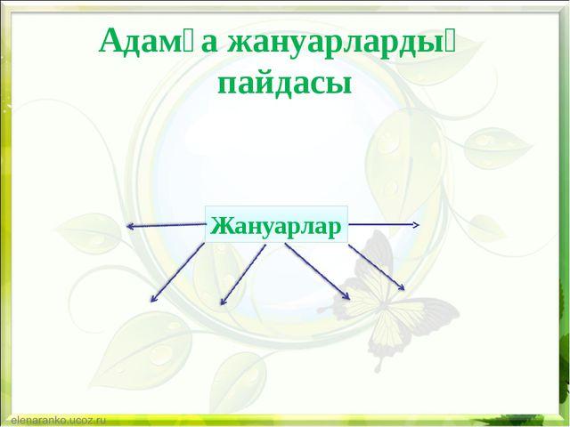 Адамға жануарлардың пайдасы Жануарлар