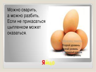 Яйцо Можно сварить, а можно разбить, Если не прикасаться цыпленком может оказ