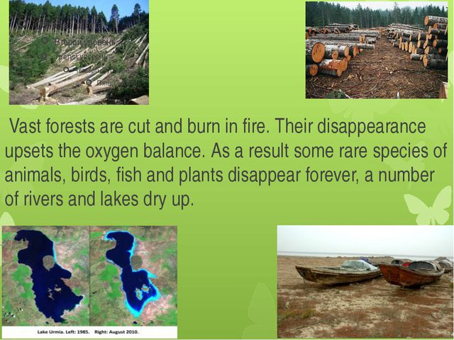 Vast forests are cut and burn in fire. Their disappearance upsets the oxygen...