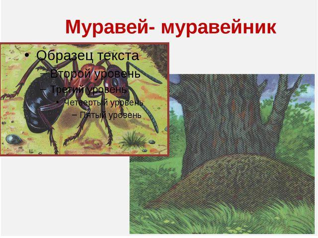 Муравей- муравейник
