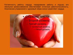 Ритмичность работы сердца, чередование работы и отдыха, его обильное кровосна