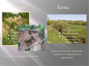 Крутые, осыпающиеся склоны Пологие склоны, поросшие травой, кустарниками и де