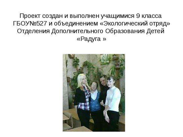 Проект создан и выполнен учащимися 9 класса ГБОУ№527 и объединением «Экологич...