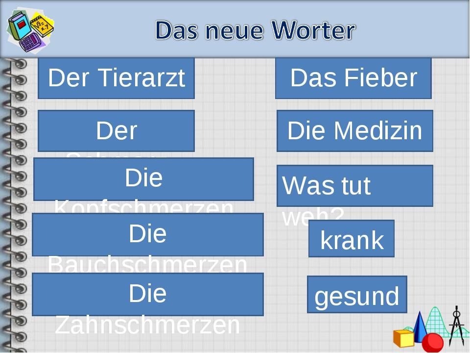 Der Tierarzt Das Fieber Die Medizin Der Schmerz Die Kopfschmerzen Die Bauchsc...