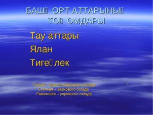 БАШҠОРТ АТТАРЫНЫҢ ТОҠОМДАРЫ Тау аттары Ялан Тигеҙлек Горная – вьючно-верховог
