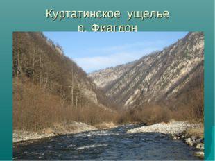 Куртатинское ущелье р. Фиагдон