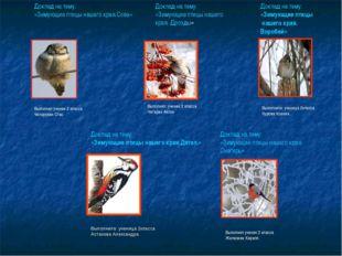 Доклад на тему: «Зимующие птицы нашего края.Сова» Выполнил ученик 2 класса Че