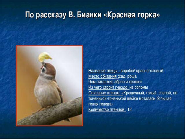 По рассказу В. Бианки «Красная горка» Название птицы : воробей красноголовый...