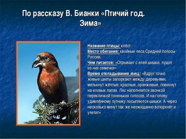 По рассказу В. Бианки «Птичий год.  Зима» Название птицы: клёст Место об...