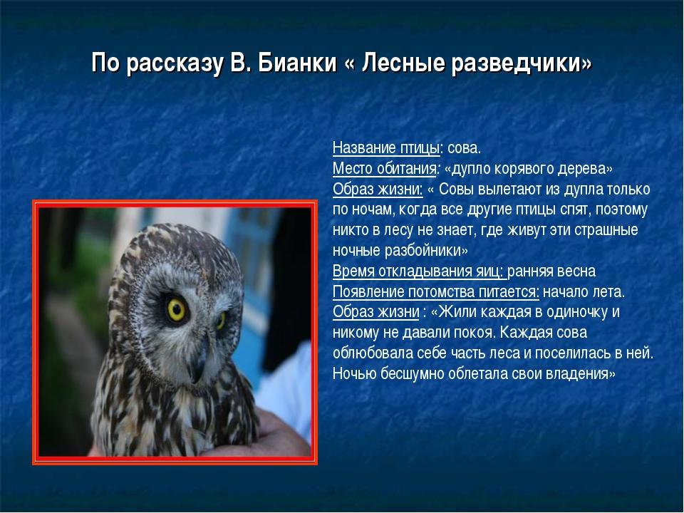 По рассказу В. Бианки « Лесные разведчики» Название птицы: сова. Место обитан...