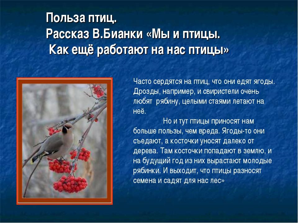 Польза птиц. Рассказ В.Бианки «Мы и птицы. Как ещё работают на нас птицы» Час...