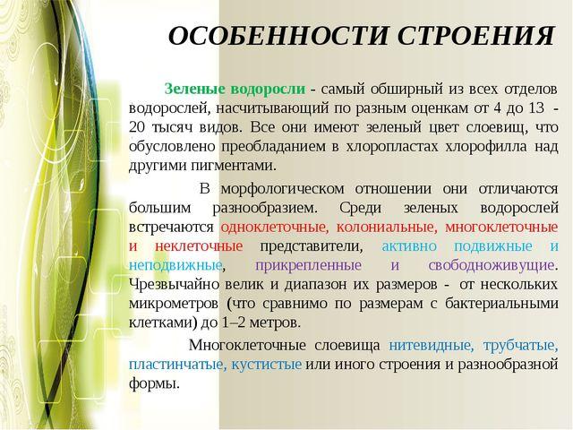 ОСОБЕННОСТИ СТРОЕНИЯ Зеленые водоросли - самый обширный из всех отделов...