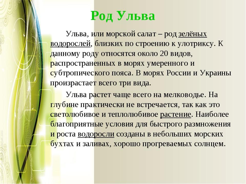 Род Ульва Ульва, или морской салат – родзелёных водорослей, близких по стро...