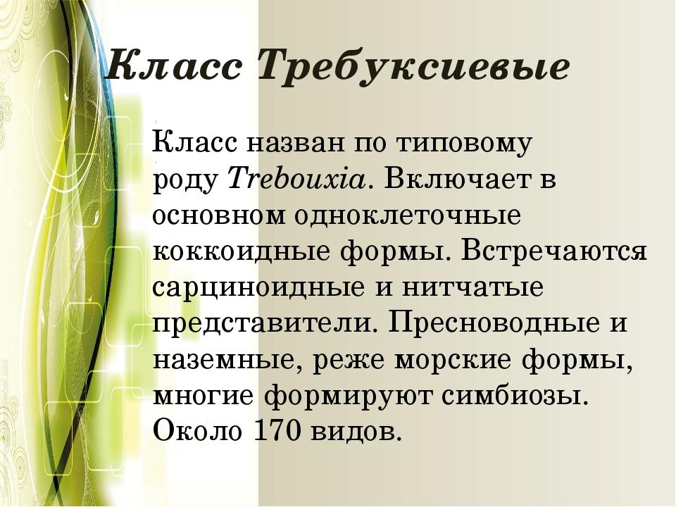 Класс Требуксиевые Класс назван по типовому родуTrebouxia. Включает в основн...
