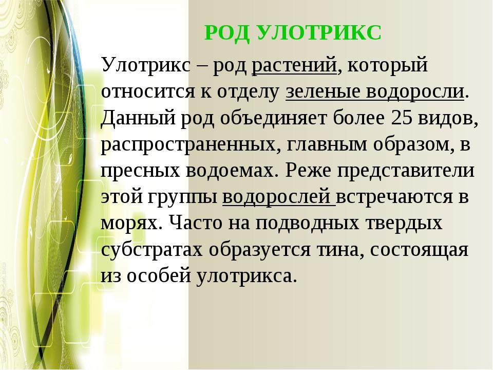РОД УЛОТРИКС Улотрикс – родрастений, который относится к отделузеленые во...