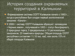Формирование системы ООПТ Калмыкии начато с 1963 г., когда в республике был