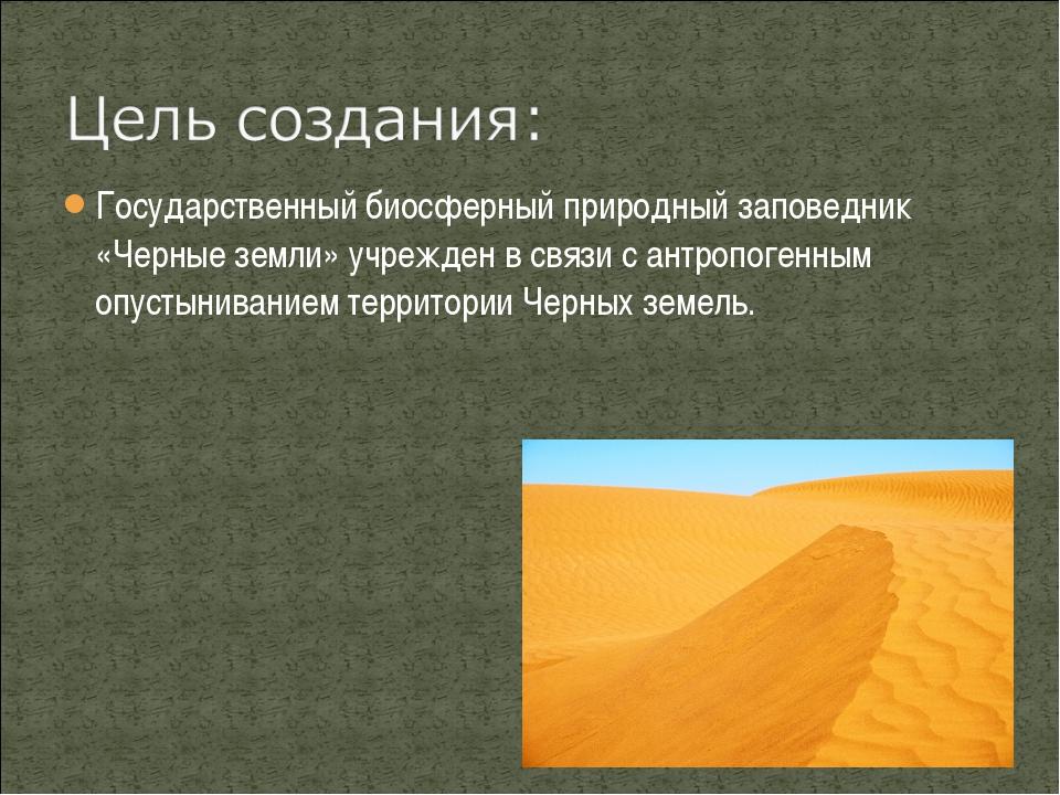 Государственный биосферный природный заповедник «Черные земли» учрежден в свя...