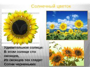Солнечный цветок Удивительное солнце: В этом солнце сто оконцев, Из оконцев т