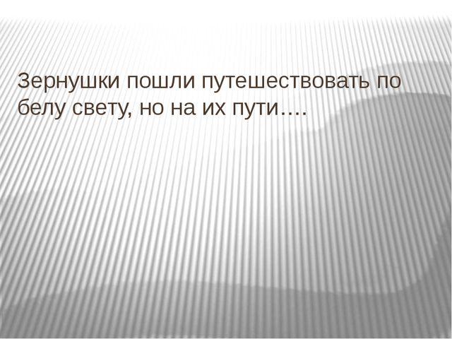 Зернушки пошли путешествовать по белу свету, но на их пути….