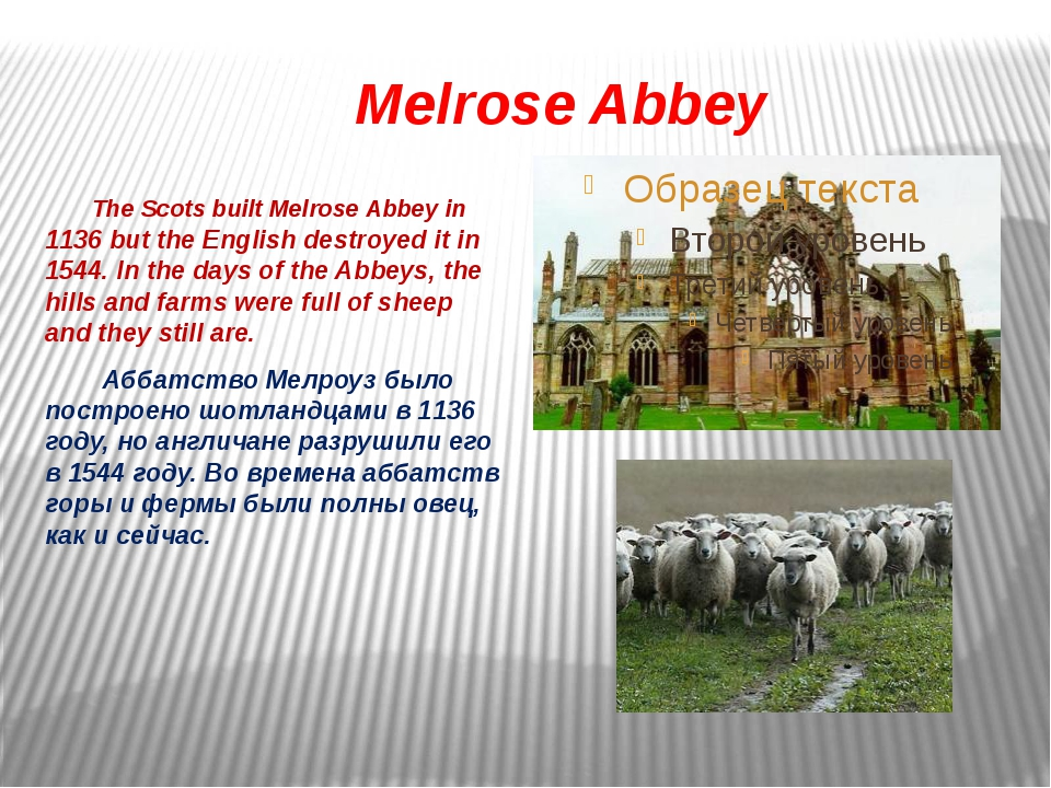 Melrose Abbey The Scots built Melrose Abbey in 1136 but the English destroye...