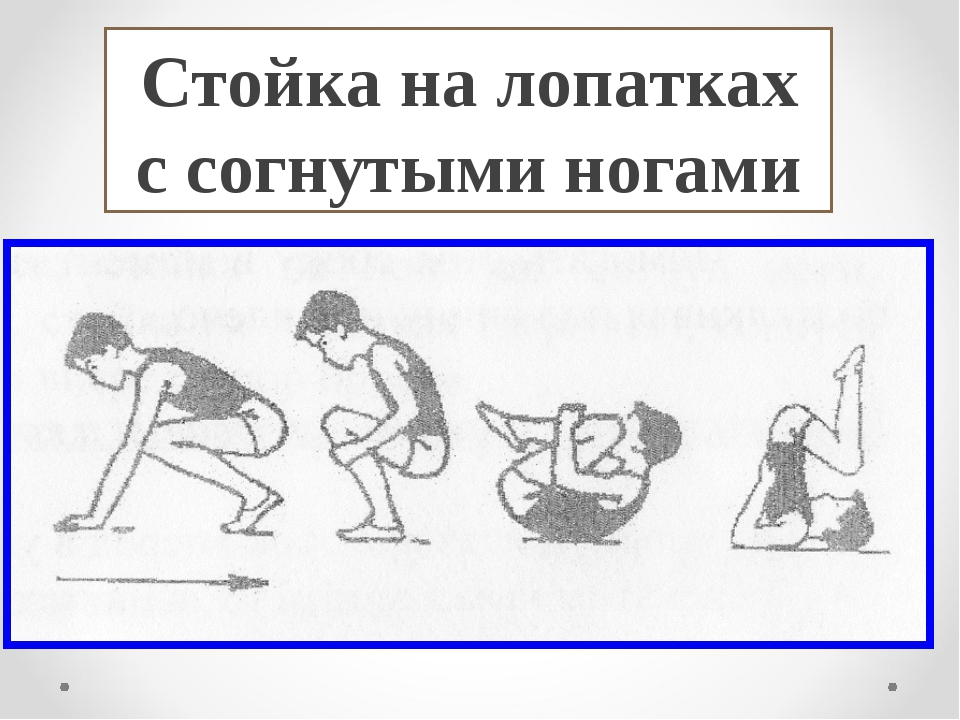 Стойка на лопатках с согнутыми ногами