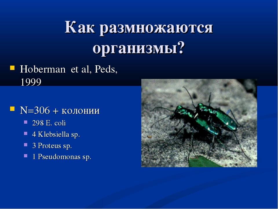 Как размножаются организмы? Hoberman et al, Peds, 1999 N=306 + колонии 298 E....