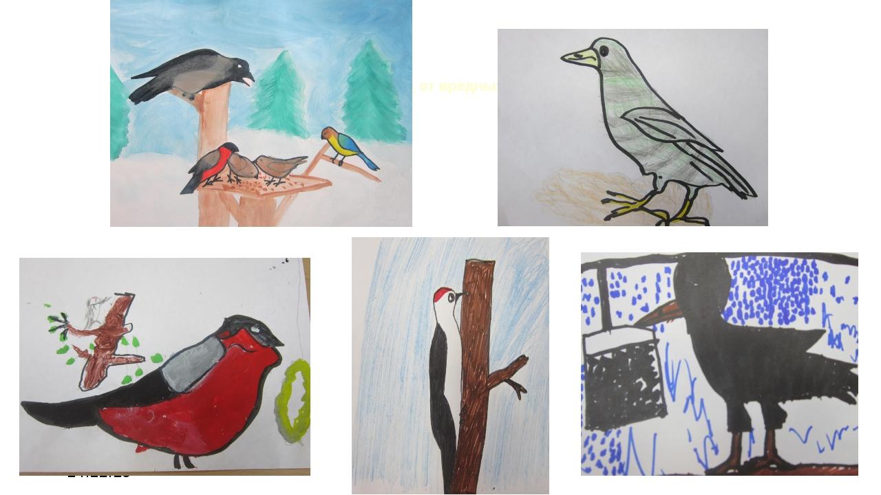 14.12.15 весной и летом птицы оберегали наш сад от вредных насекомых