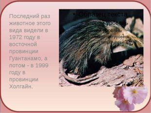 Последний раз животное этого вида видели в 1972 году в восточной провинции Гу
