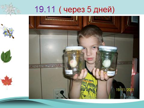 hello_html_m3ea1cb88.png