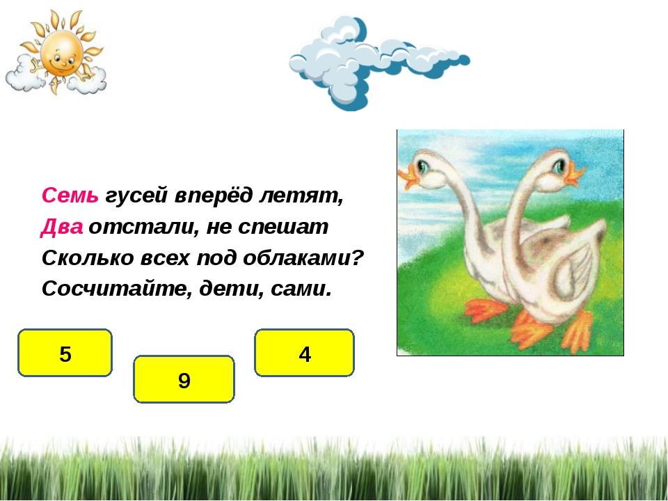Семь гусей вперёд летят, Два отстали, не спешат Сколько всех под облаками? Со...