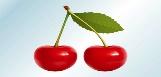 http://www.vectorsland.com/imgd/l35436-realistic-cherries-22797.jpg