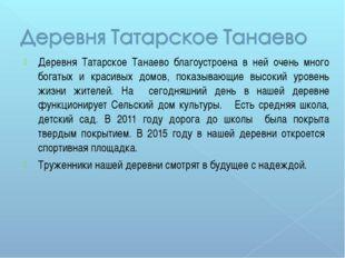 Деревня Татарское Танаево благоустроена в ней очень много богатых и красивых