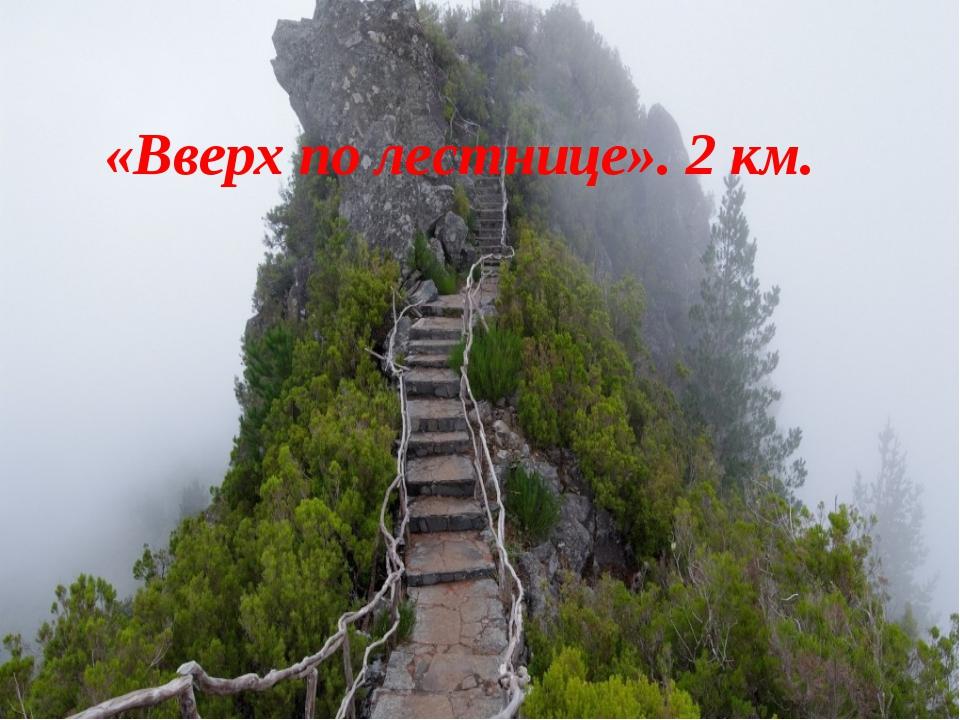 «Вверх по лестнице». 2 км.