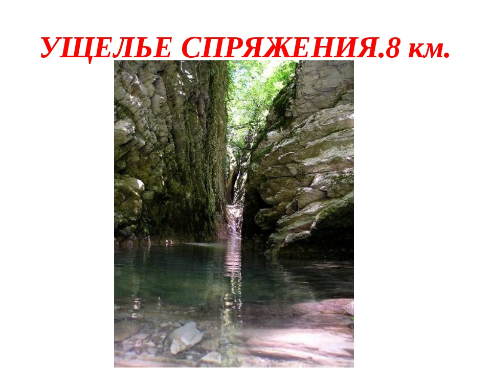 УЩЕЛЬЕ СПРЯЖЕНИЯ.8 км.