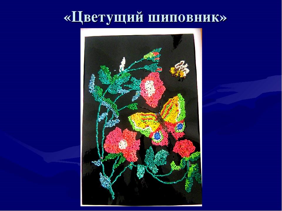 «Цветущий шиповник»