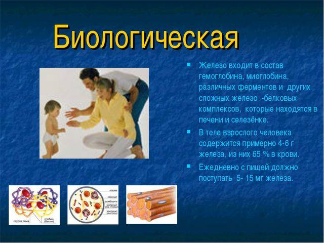 Биологическая Железо входит в состав гемоглобина, миоглобина, различных ферме...
