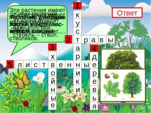 5 3 1 4 2 Эти растения имеют несколько довольно тонких, но одревес- невших с