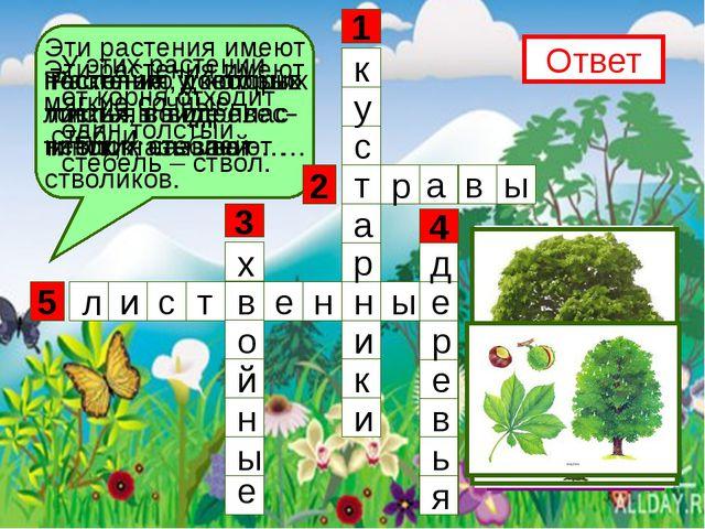 5 3 1 4 2 Эти растения имеют несколько довольно тонких, но одревес- невших с...
