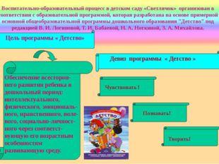 Воспитательно-образовательный процесс в детском саду «Светлячок» организован