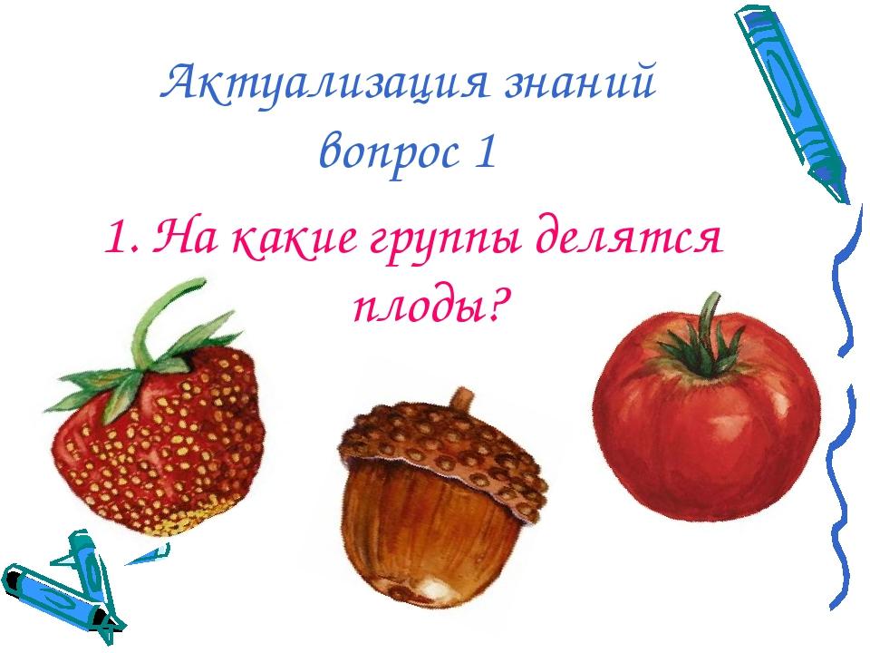 Актуализация знаний вопрос 1 1. На какие группы делятся плоды?