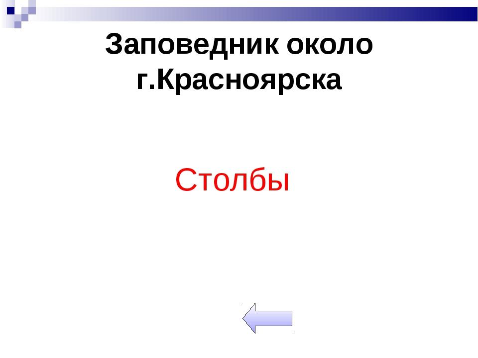Заповедник около г.Красноярска Столбы