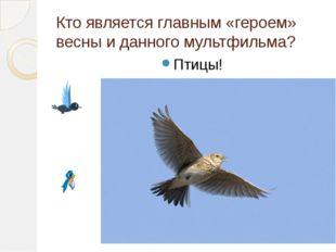 Кто является главным «героем» весны и данного мультфильма? Птицы!