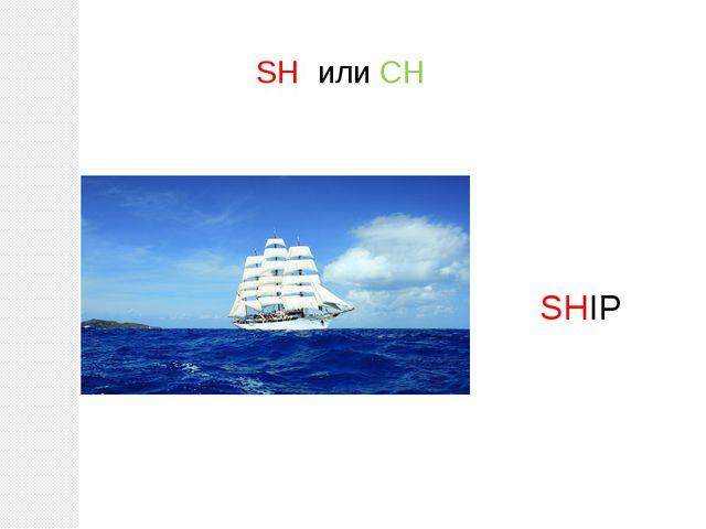 SH или CH SHIP