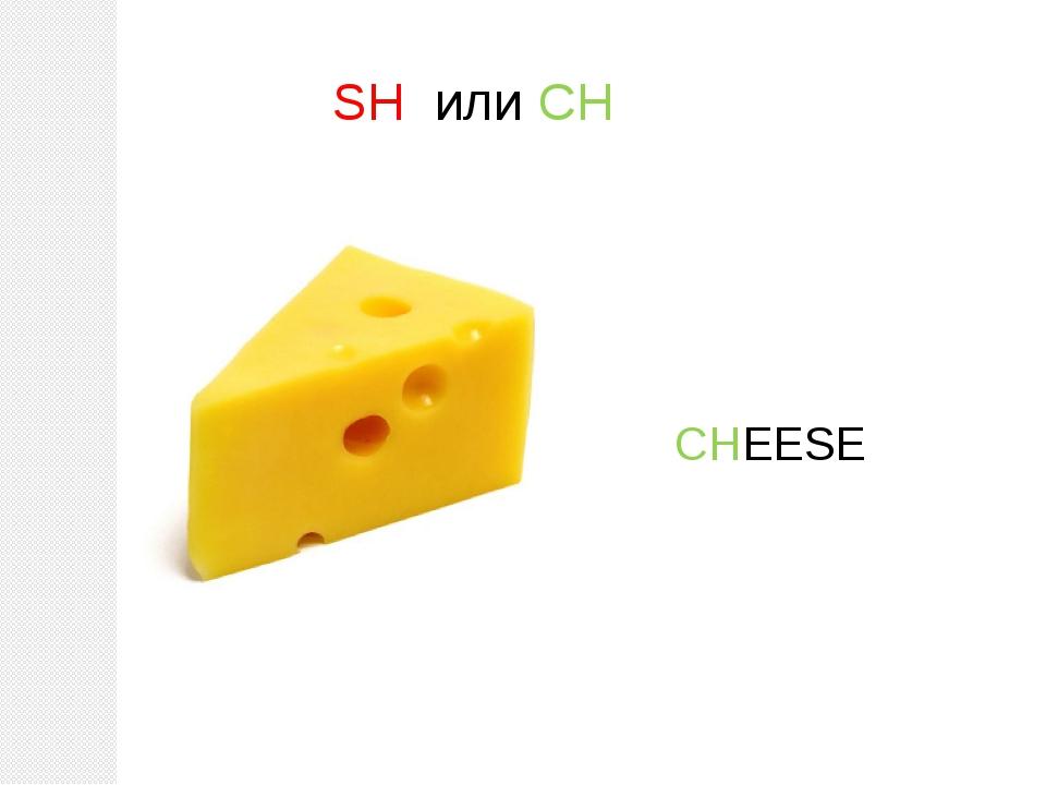 SH или CH CHEESE