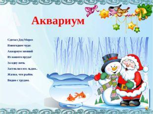 Аквариум Сделал Дед Мороз Новогоднее чудо: Аквариум зимний Из нашего пруда! З
