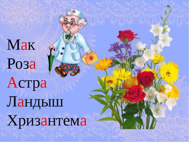 Мак Роза Астра Ландыш Хризантема