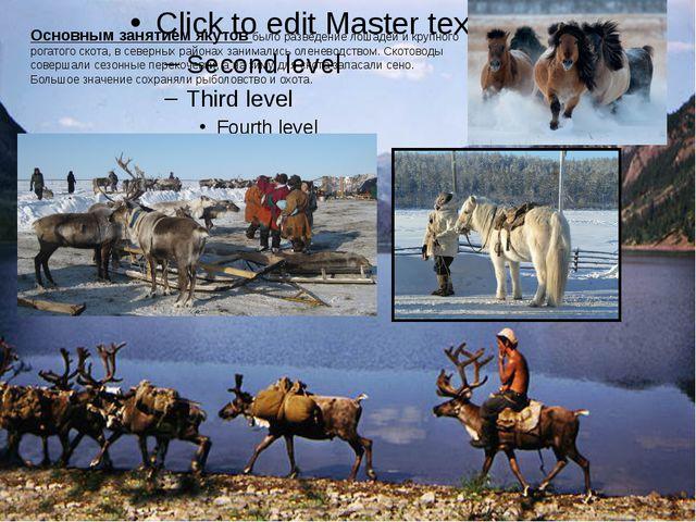 Основным занятием якутов было разведение лошадей и крупного рогатого скота, в...