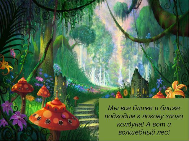 Мы все ближе и ближе подходим к логову злого колдуна! А вот и волшебный лес!