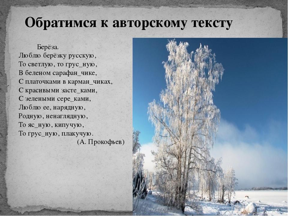 Обратимся к авторскому тексту Берёза. Люблю берёзку русскую, То светлую, то г...